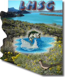 Lake Havasu Guide